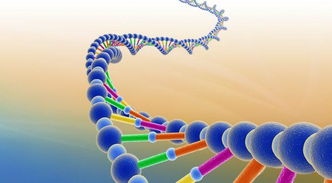 ¿Somos víctimas de nuestro ADN?