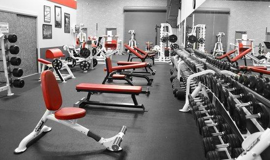 ¿Cuánto puedes ahorrar haciendo ejercicio en casa?